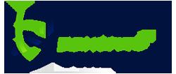 logo brandon